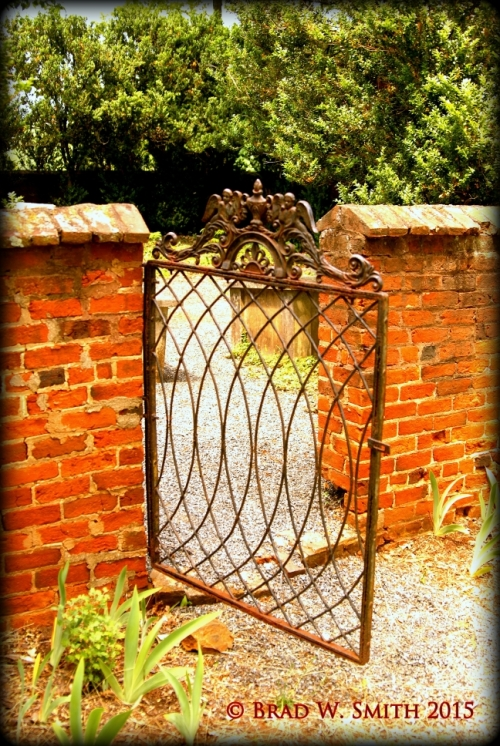 iron gate in curvilinear pattern, garden plants, waist-high brick pillars, row of trees in background