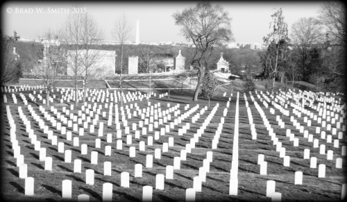 Arlington National Cemetery rows of white headstones,